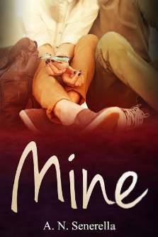 AN Senerella Mine BookCover